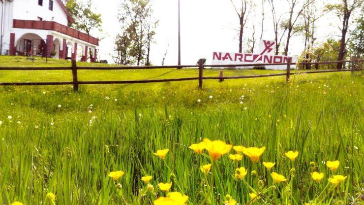 Centro Narconon Piemonte - liberati dalle droghe per davvero